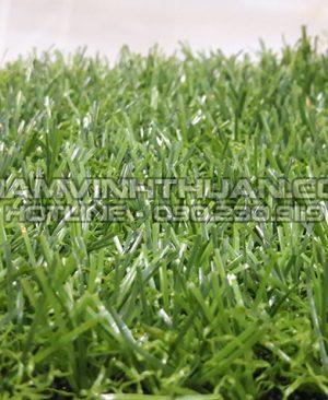 Thảm cỏ nhân tạo 15 mm
